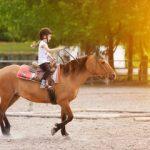 Migliore Scuola di Equitazione Roma